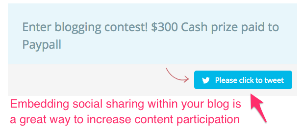 BlogExpose_Contest_Submission_Form