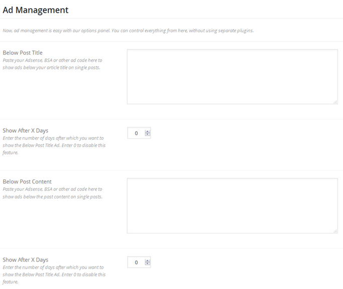 WordPress ecommerce theme ad management