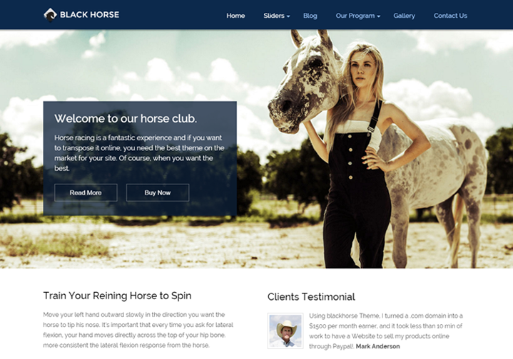 WordPress Theme For Equestrians