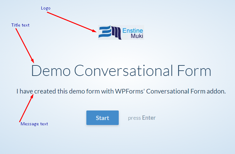conversational form demo