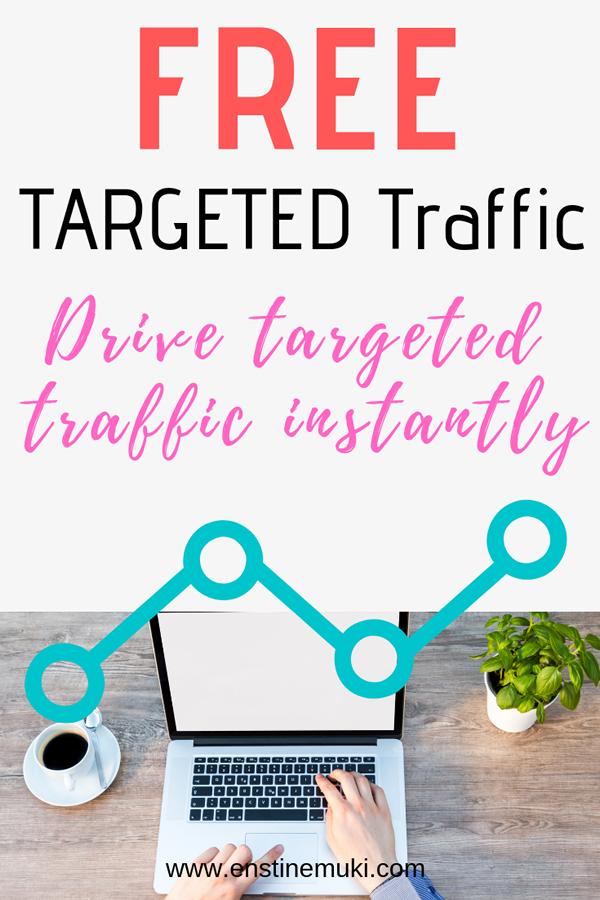 Free TARGETED Traffic pin