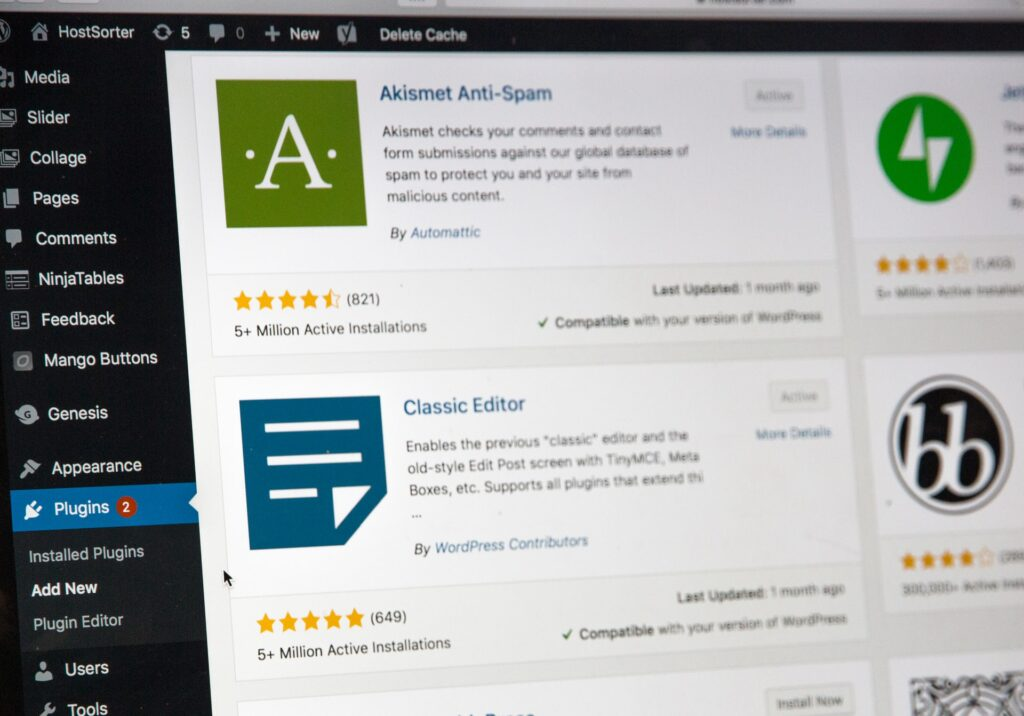 Plugins tab WordPress